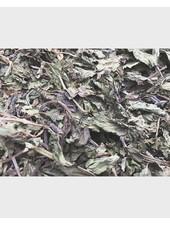 Peppermint leaves 1.5 kg - 15 kg