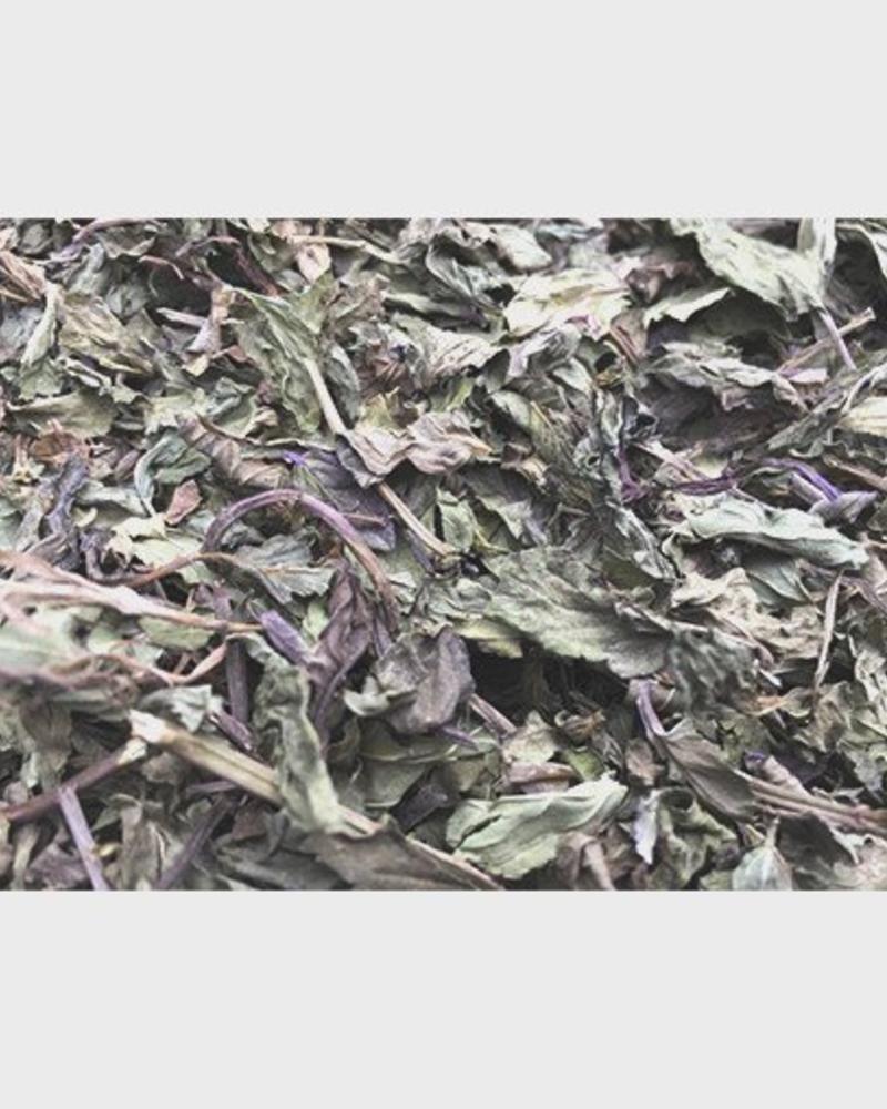 Pepermuntbladeren - Mentha x Piperita