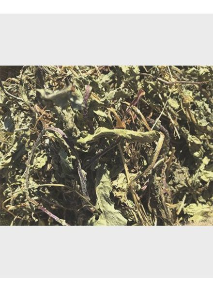 Nettle leaves 1.5 kg - 15 kg