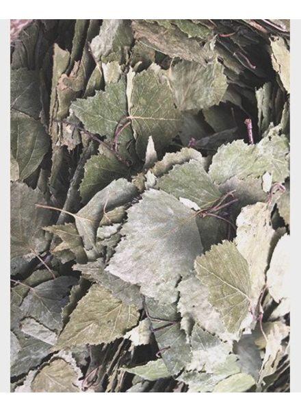 Berkenblad: gr. gewicht