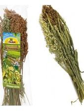 JR FARM Récolte d'été
