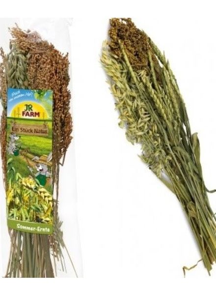 JR FARM Zomer oogst