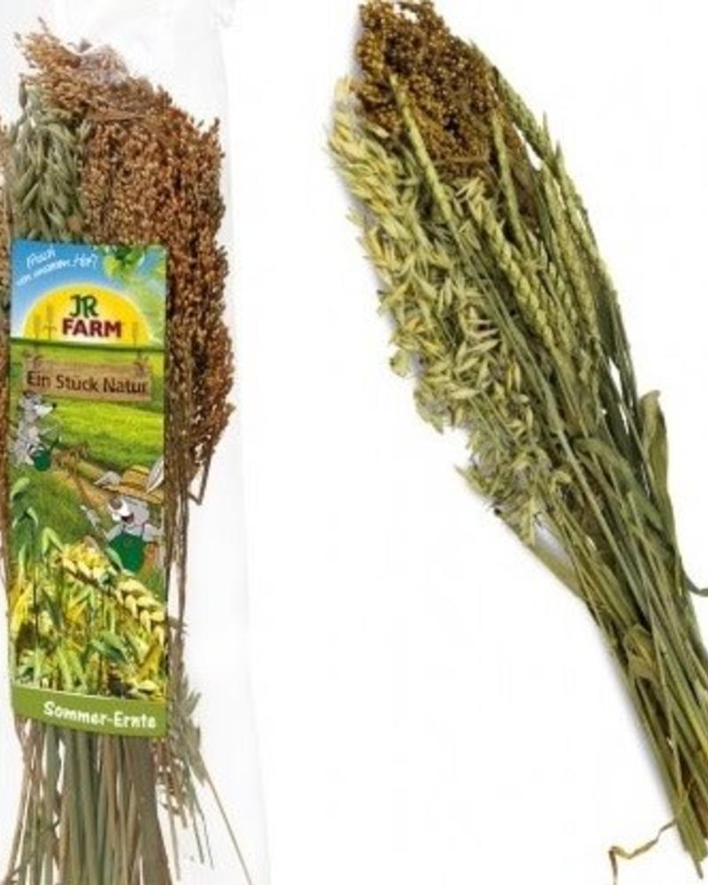 JR FARM JR-Farm Récolte d'été