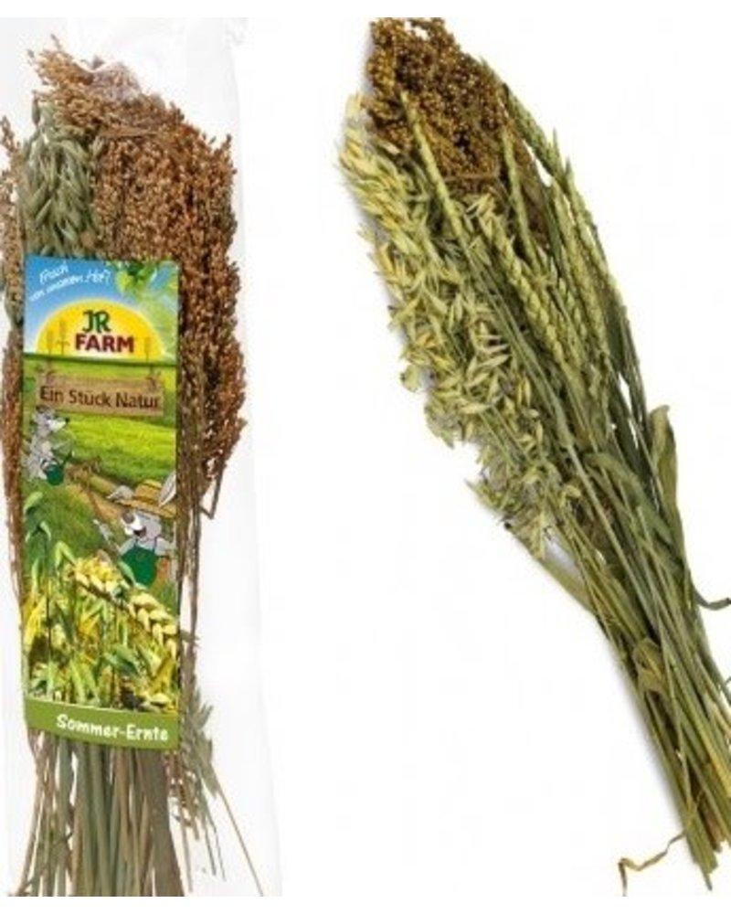 JR FARM Jr-Farm Summer Harvest