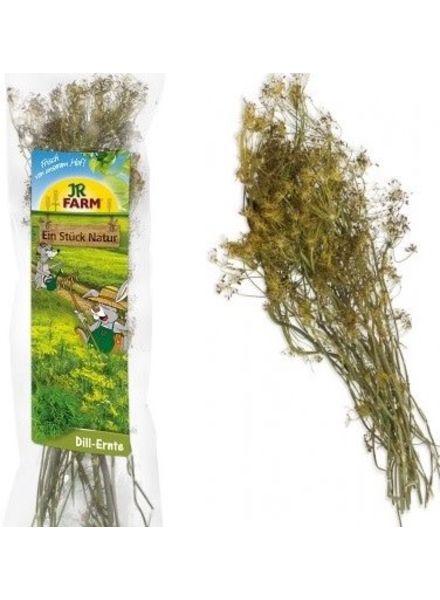 JR FARM Dille oogst