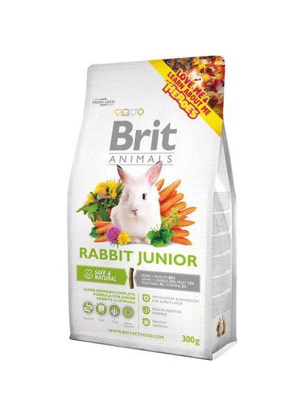 Brit Junior 1.5 kg