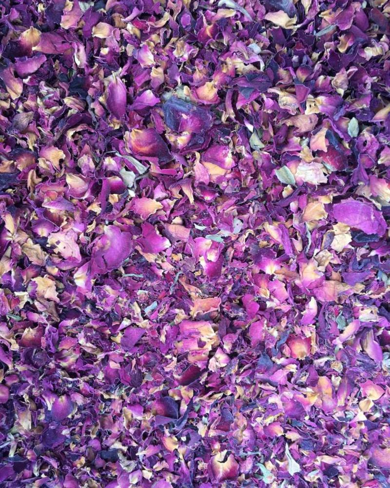 Rose flower petals