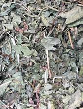 Dandelion leaves first choice 1.5 - 15 kg