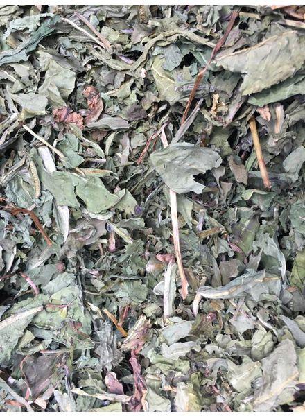 Pissenlit 1.5 - 20 kg