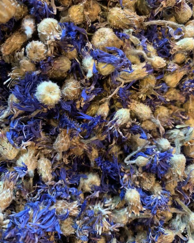 Korenbloem blauw - Centaurea cyanus