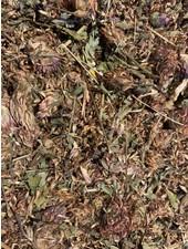 Fleurs de trèfle rouge 1.5 - 15 kg