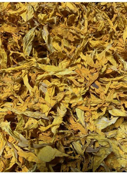 Fleurs Tournesols  100gr - 1 kg