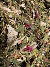 Mélange de feuilles 1.5 - 15kg