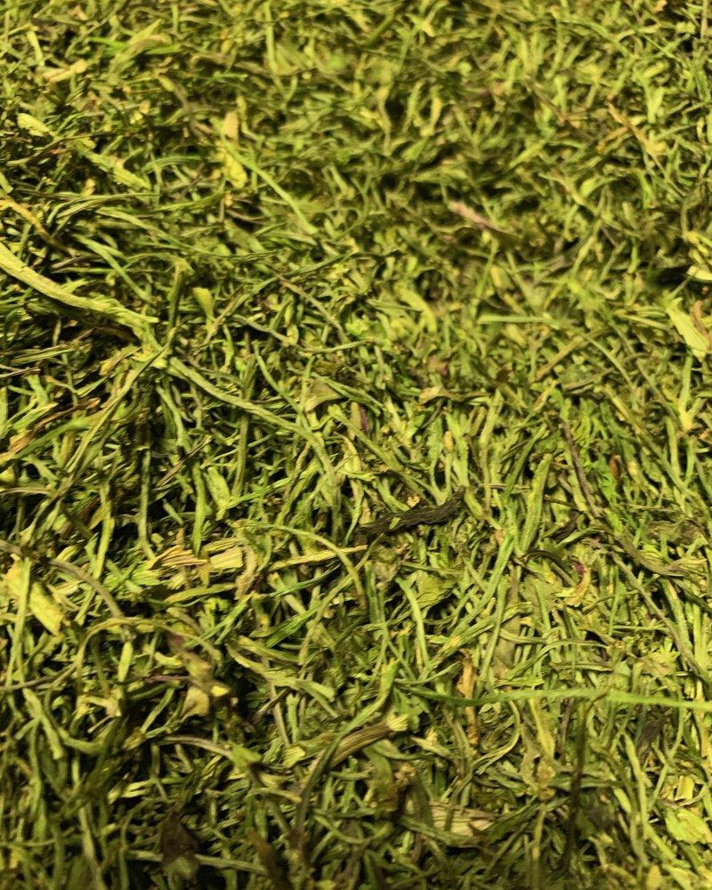 Koriandersteeltjes - Coriandrum sativum