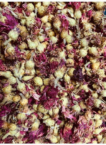 Korenbloem roos: kl.gewicht