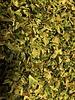 Broccoli flakes - Brassica oleracea var. italica Plenck