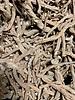 Paardenbloemwortelen - Taraxacum officinale radix