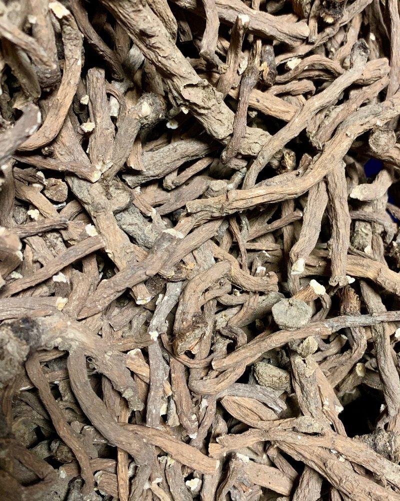 Racine de pissenlit - Taraxacum officinale radix