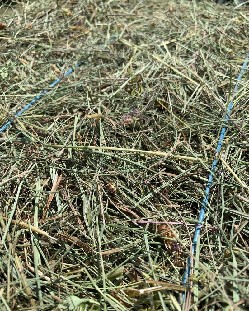Happy Rabbit Premium German herbal hay