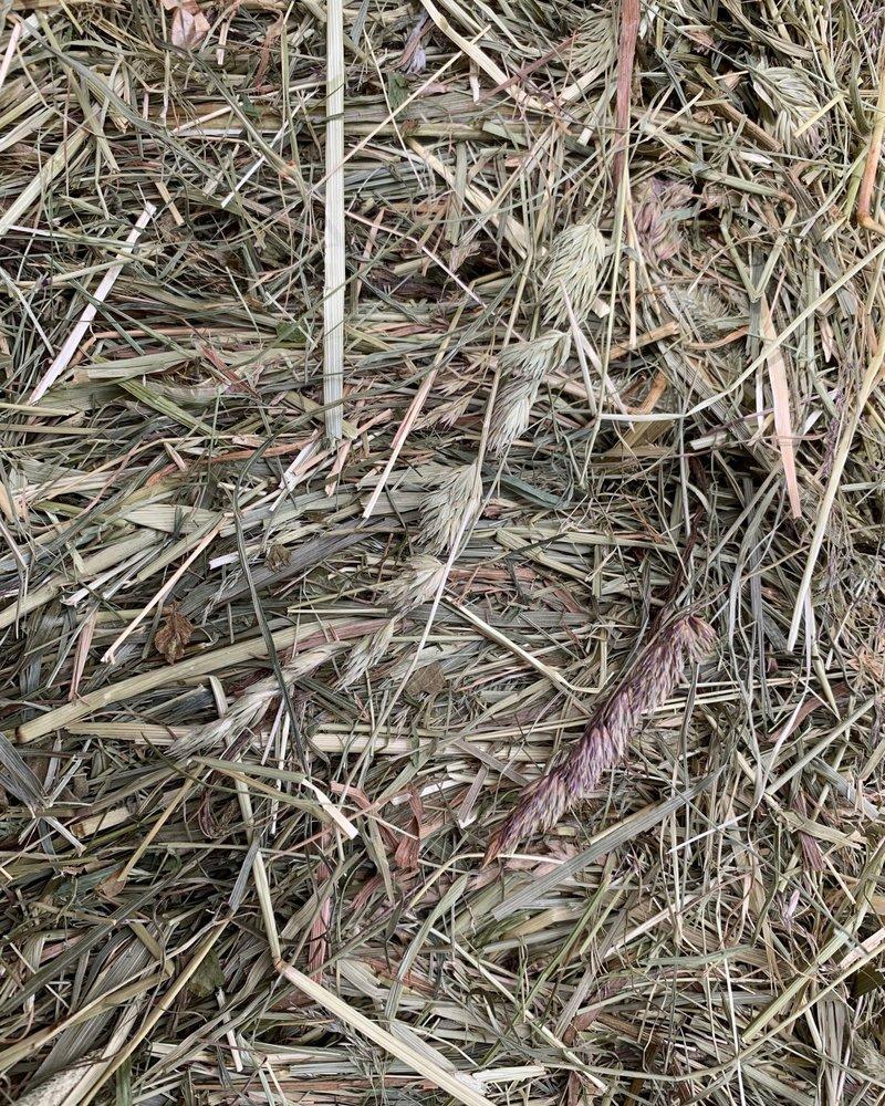 Happy Rabbits German Herbal Hay BALES, cut June 2020
