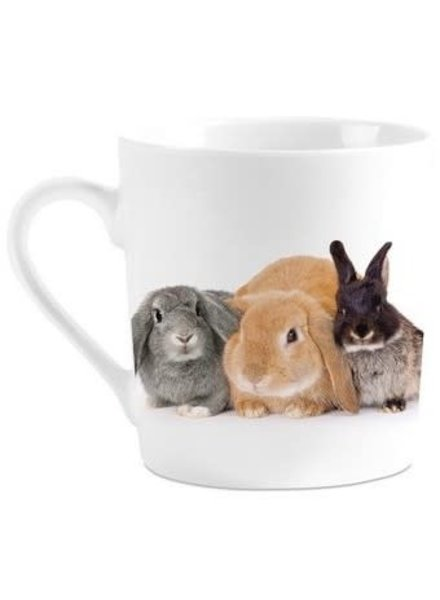 Drinktas, I Love Rabbits