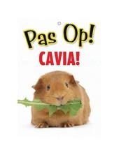 Waakbord Cavia