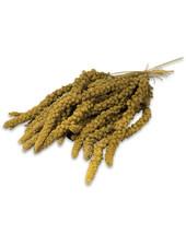 JR FARM Spray Millet yellow
