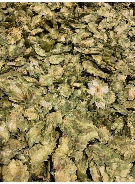 Houblon 100 gr - 1 kg
