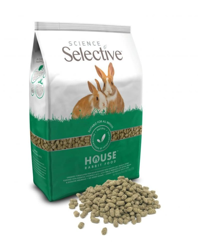Science Selective Science Selective House Rabbit