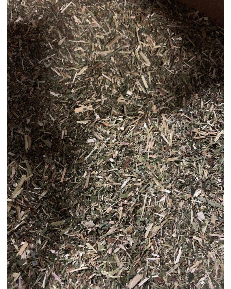 Moerasspirea - Filipendula ulmaria