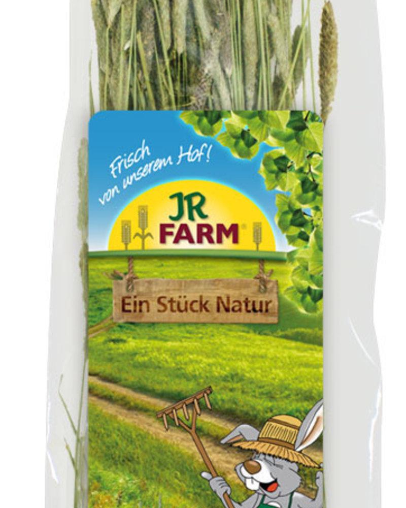 JR FARM Jr-Farm A piece of nature Timothy Harvest 80g