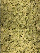 Pea flakes 1.5 kg - 15 kg