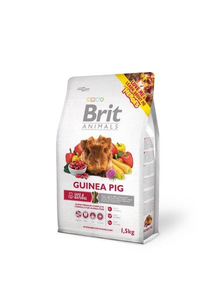 Brit Guinea pig 1.5 kg