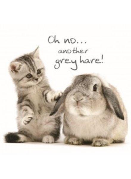 Birthday card  Grey Hares
