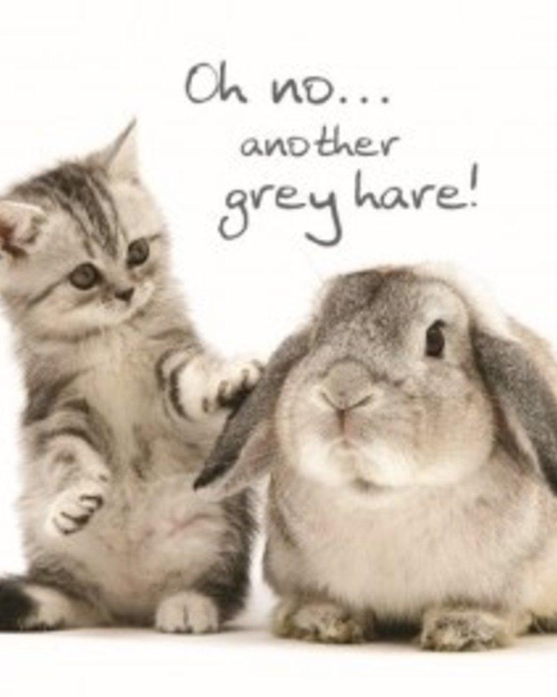 Verjaardagskaart Grey Hares
