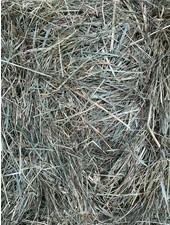 Happy rabbits German Meadow Hay. Cut june 2020. BALES