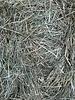 Happy rabbits German Meadow Hay. Cut june 2020. 17 - 20 kg