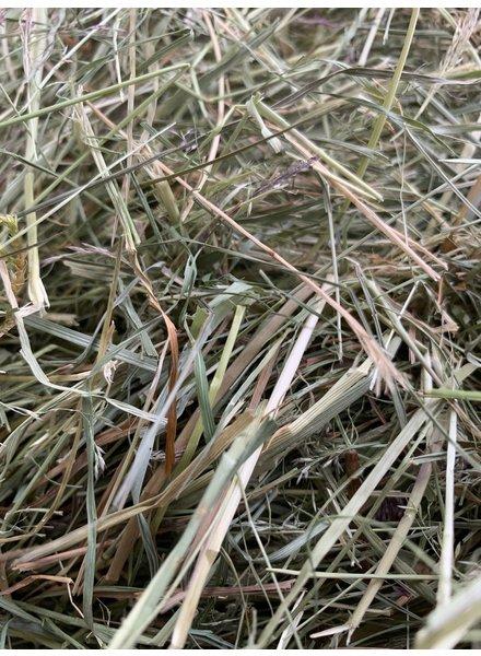 Happy rabbits German Herbal Hay. Cut june 2020. BALES