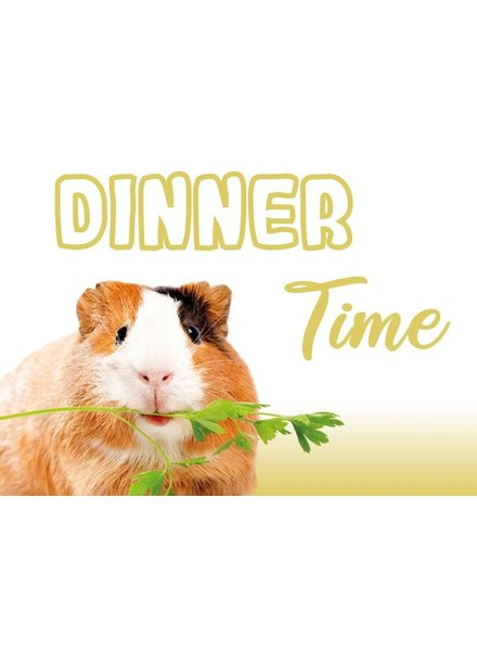 Placemat. Cavia Dinner Time!