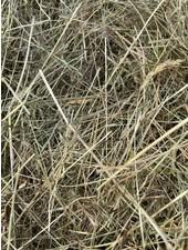 German Herbal hay Pure nature,  cut july 2021