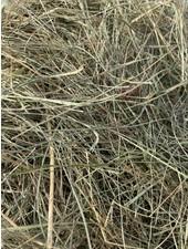Premium German herbal hay, cut july 2021. BALES