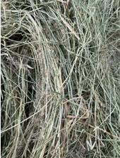 Belgian nature  hay, cut July 2021 BALLS