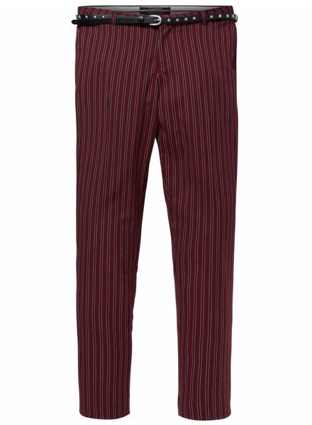 SCOTCH & SODA 146717 Classic tailored pants in stripes, sold with a belt