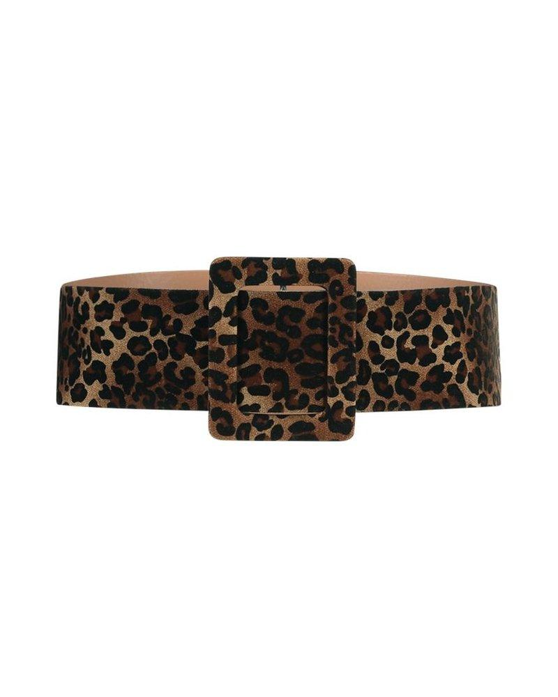FREEBIRD Belt leopard