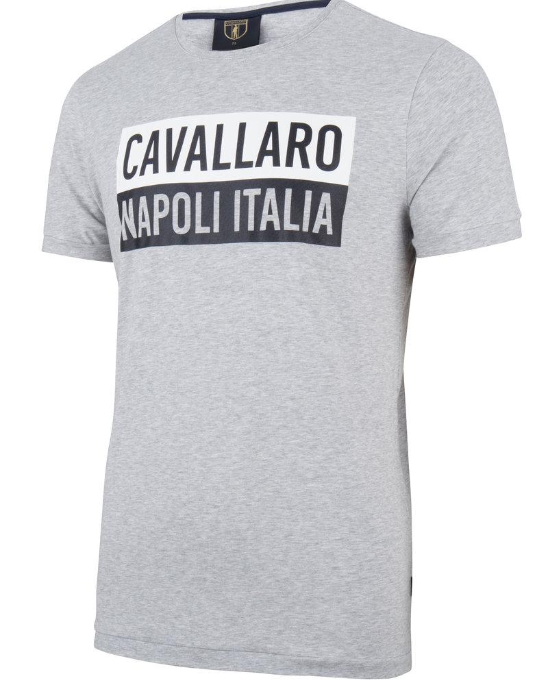 CAVALLARO 1791005 Augusto tee grey