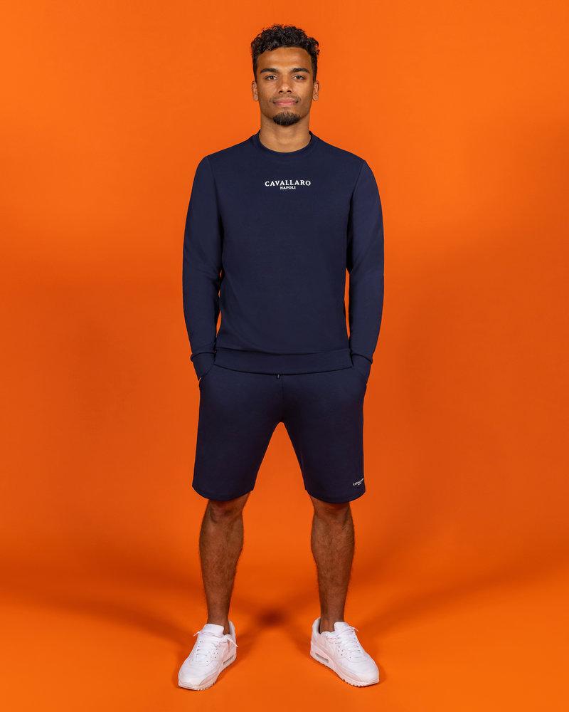 CAVALLARO 122212001 Ec 21 shorts dark blue