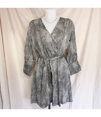 Silver Isabella Silky Dress