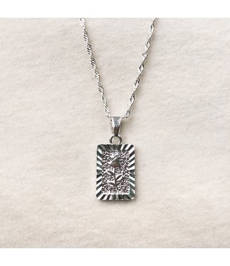Silver Enchanted Rose Necklace