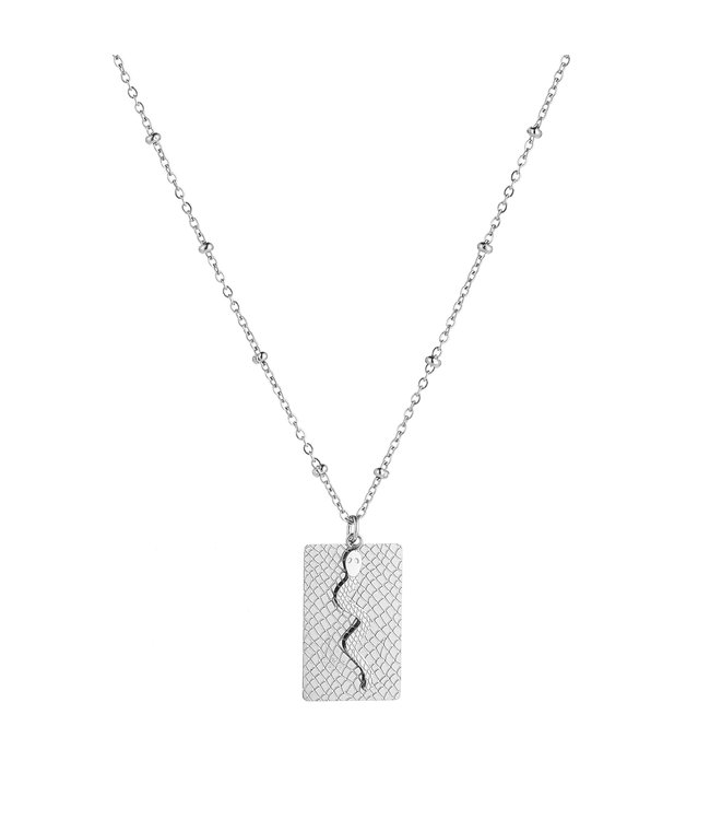 Silver Snake Tag Necklace