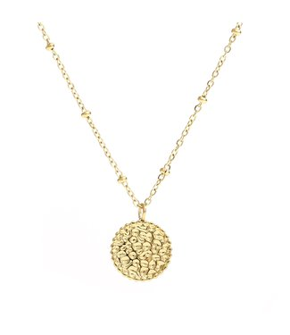 Gold Leopard Coin Necklace